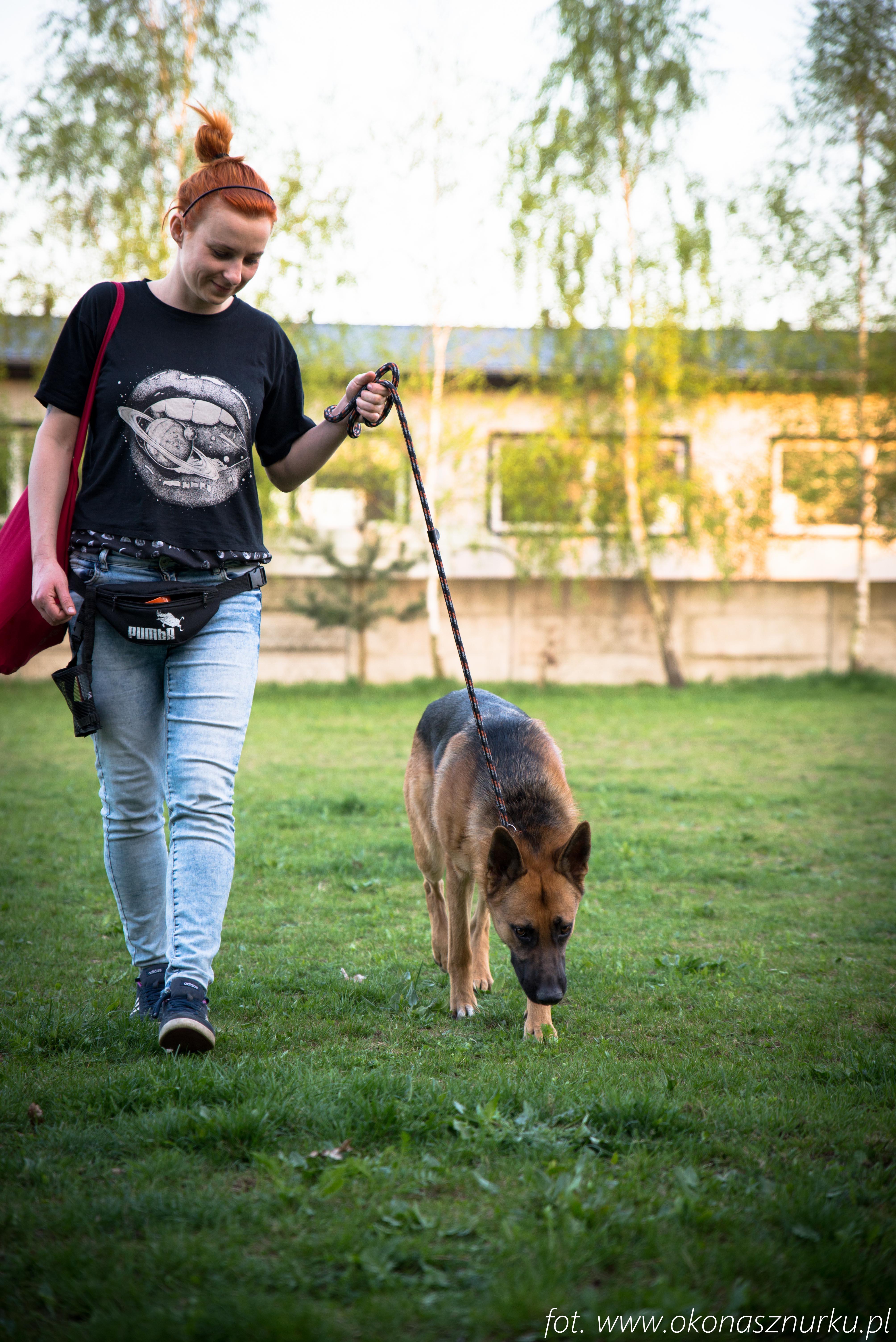 czedar-szkolenie-dog-academy-oko-na-sznurku (10)