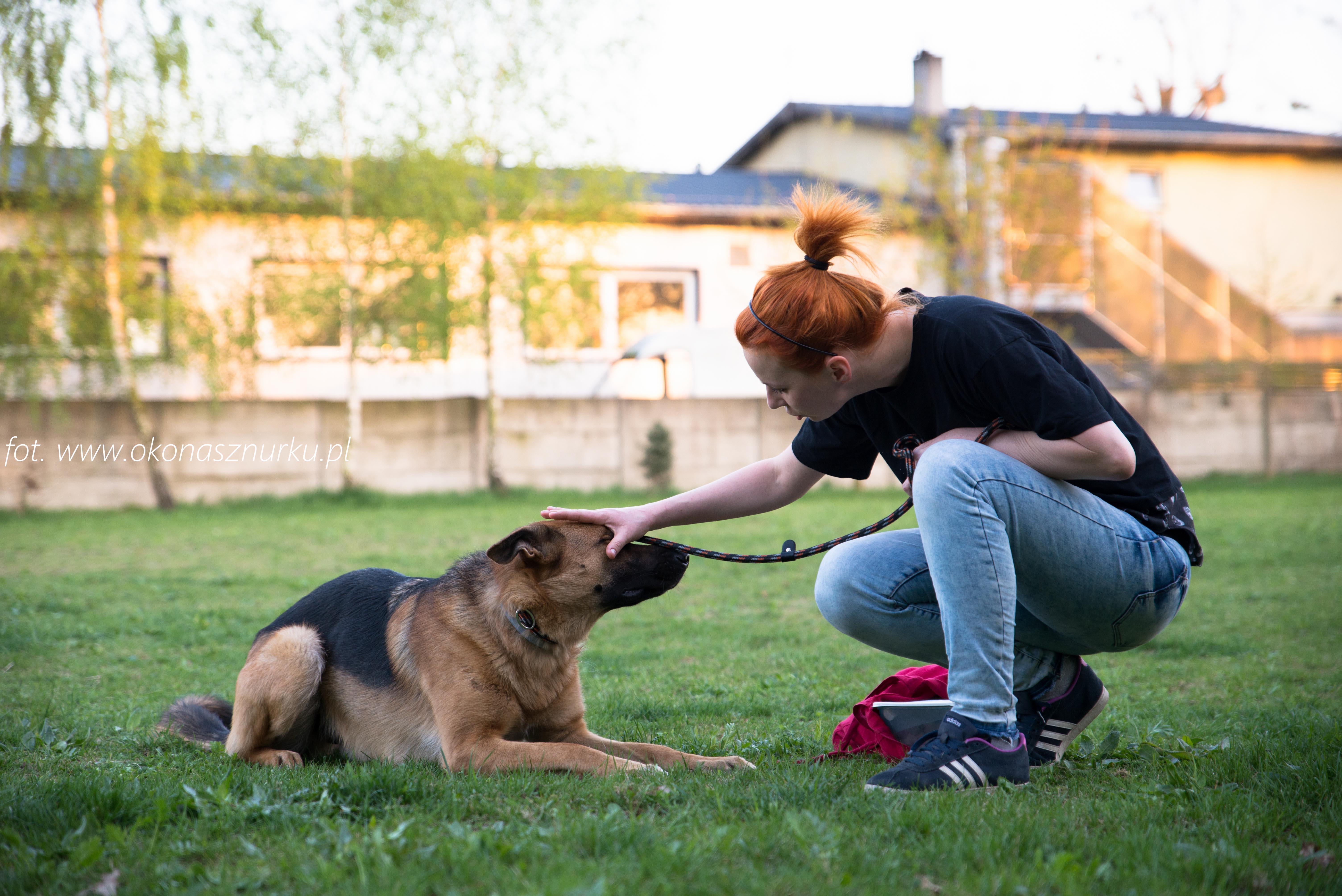 czedar-szkolenie-dog-academy-oko-na-sznurku (11)