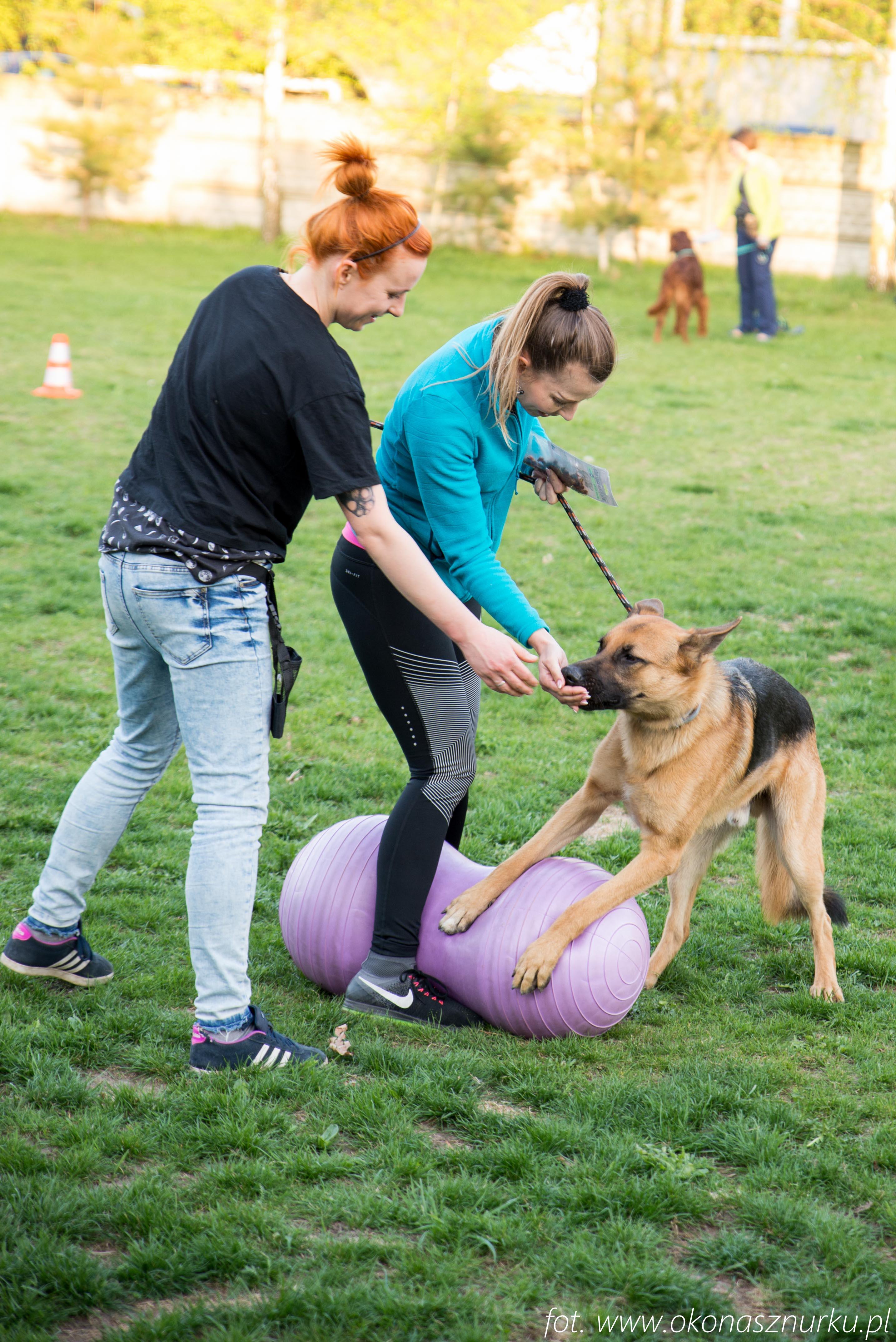 czedar-szkolenie-dog-academy-oko-na-sznurku (4)