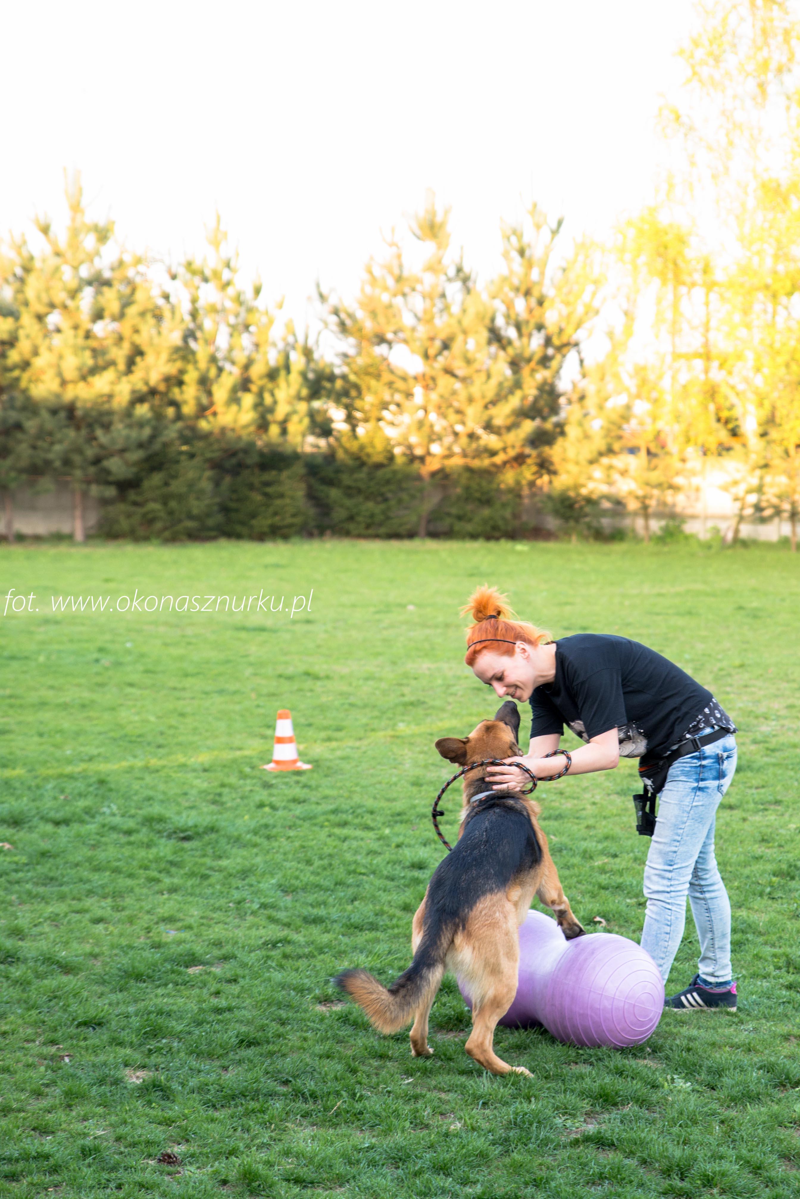 czedar-szkolenie-dog-academy-oko-na-sznurku (5)