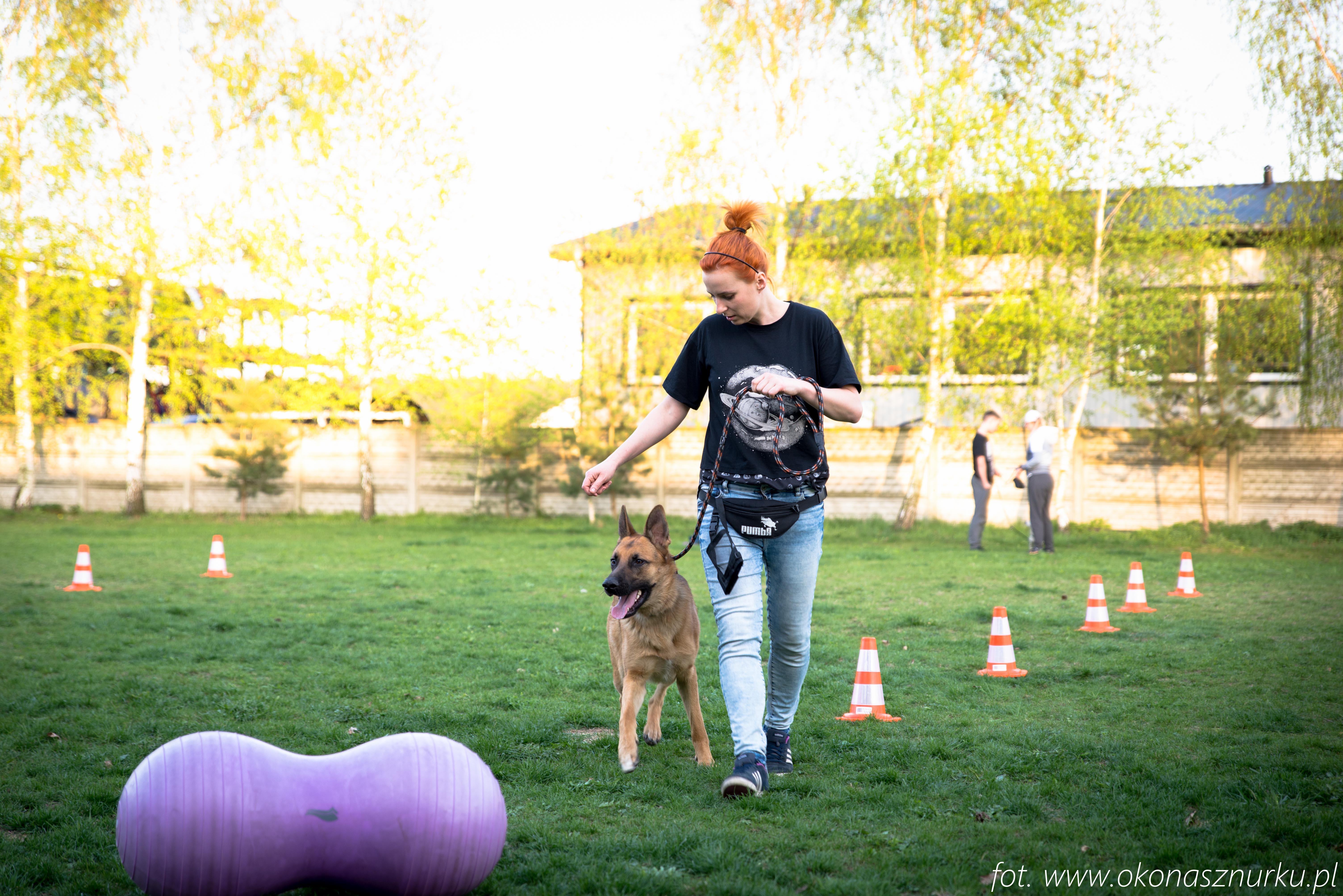 czedar-szkolenie-dog-academy-oko-na-sznurku (6)