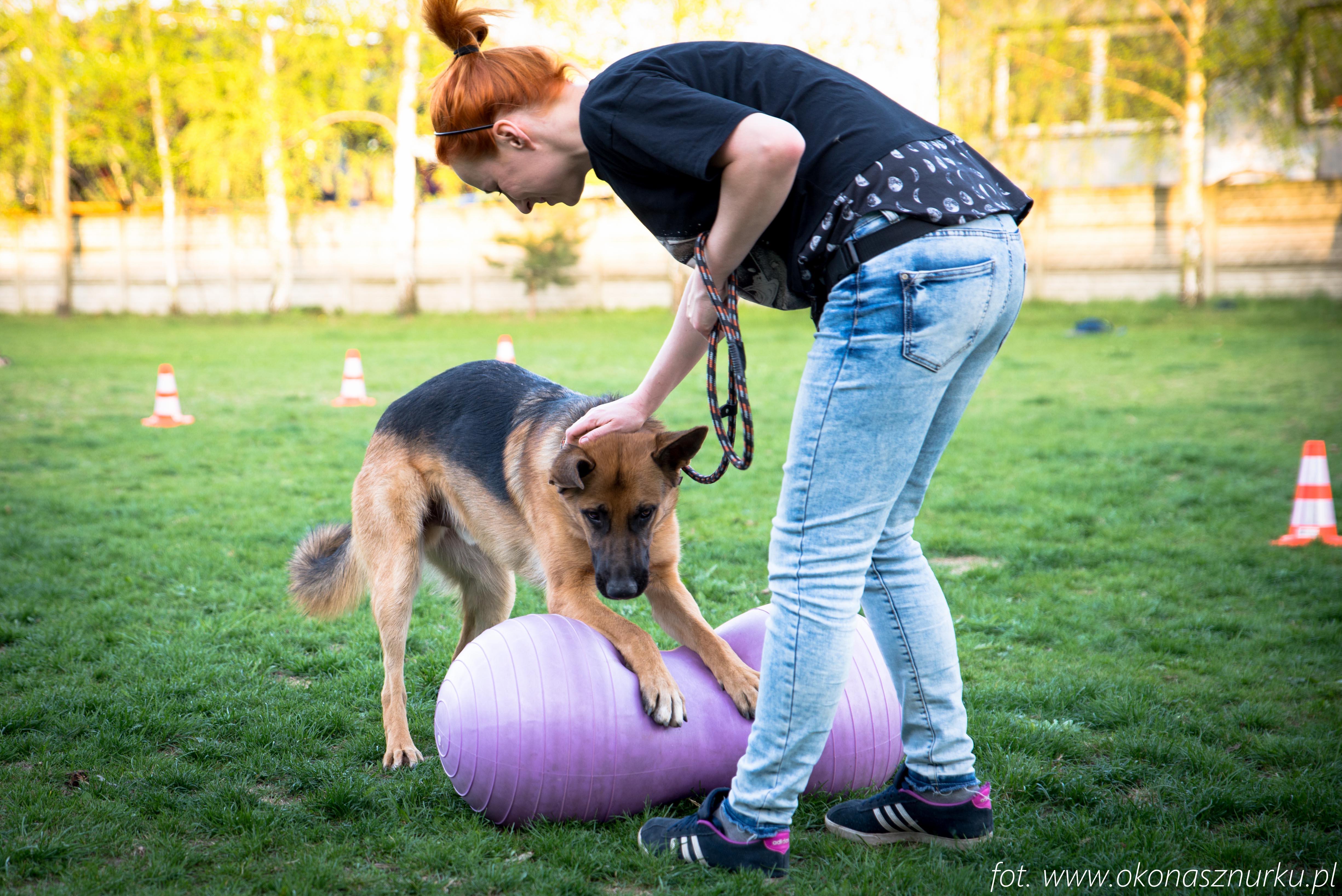 czedar-szkolenie-dog-academy-oko-na-sznurku (7)