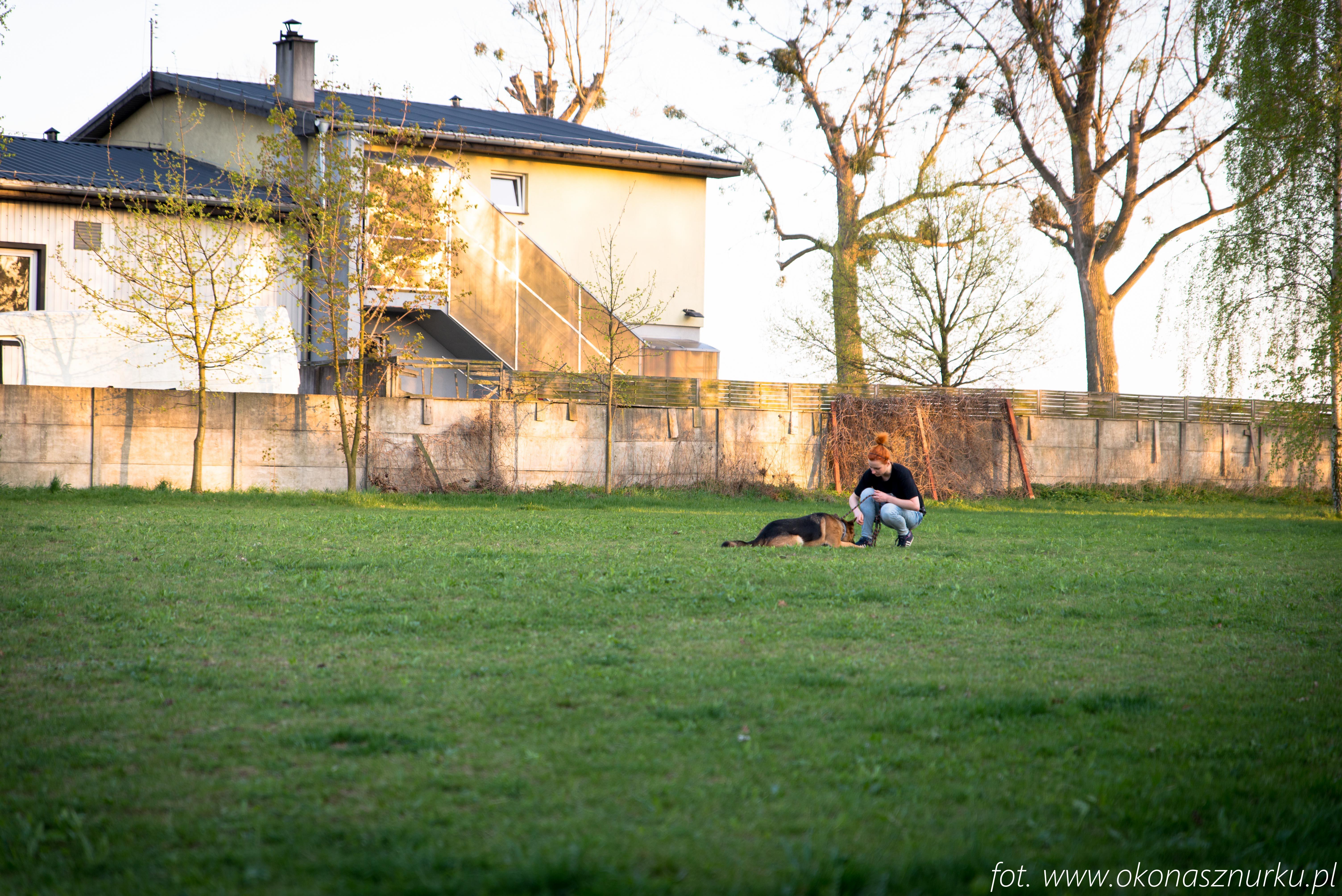 czedar-szkolenie-dog-academy-oko-na-sznurku (8)