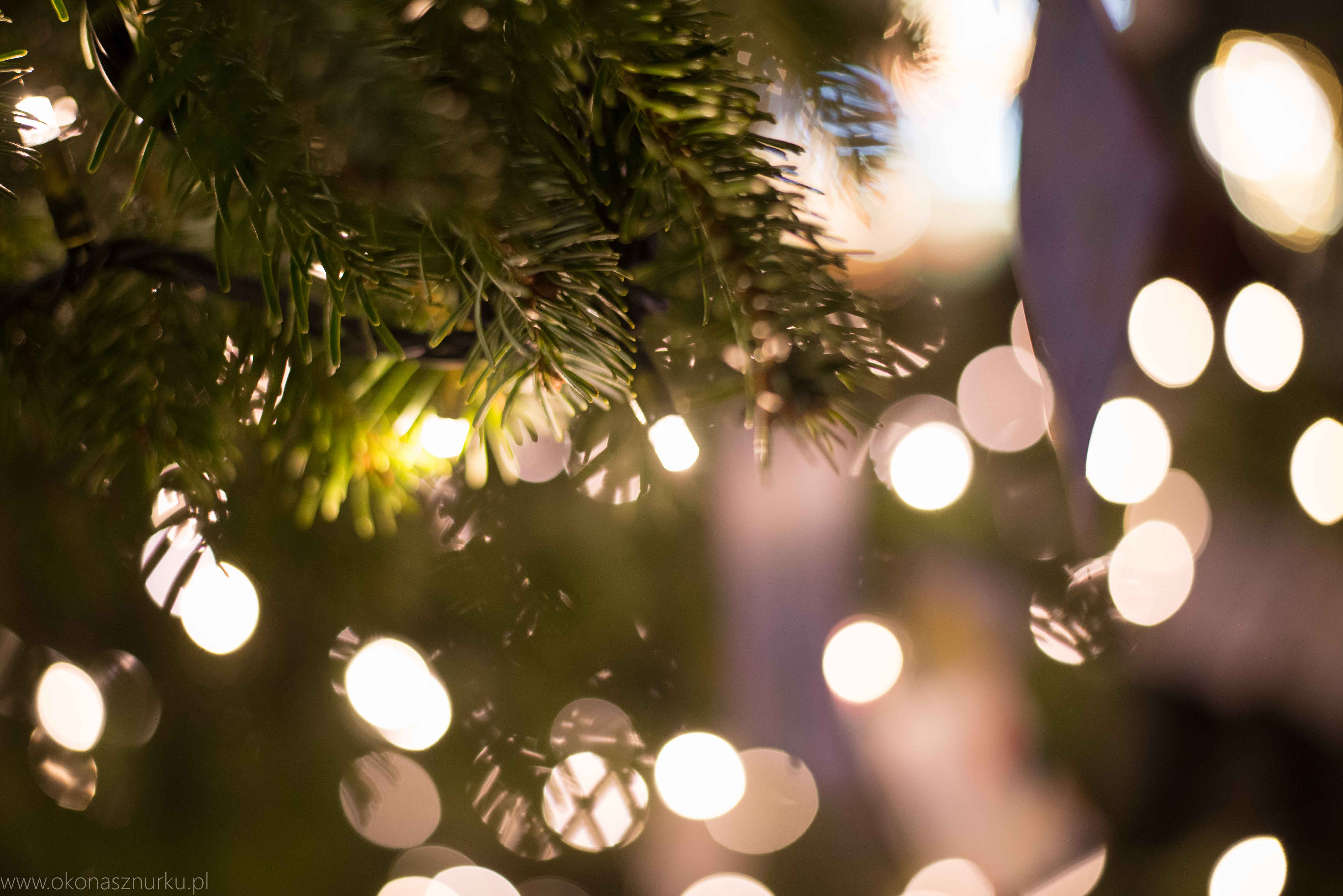 norymberga-weihnachtsmarkt-christmas-market-nurnberg (16)