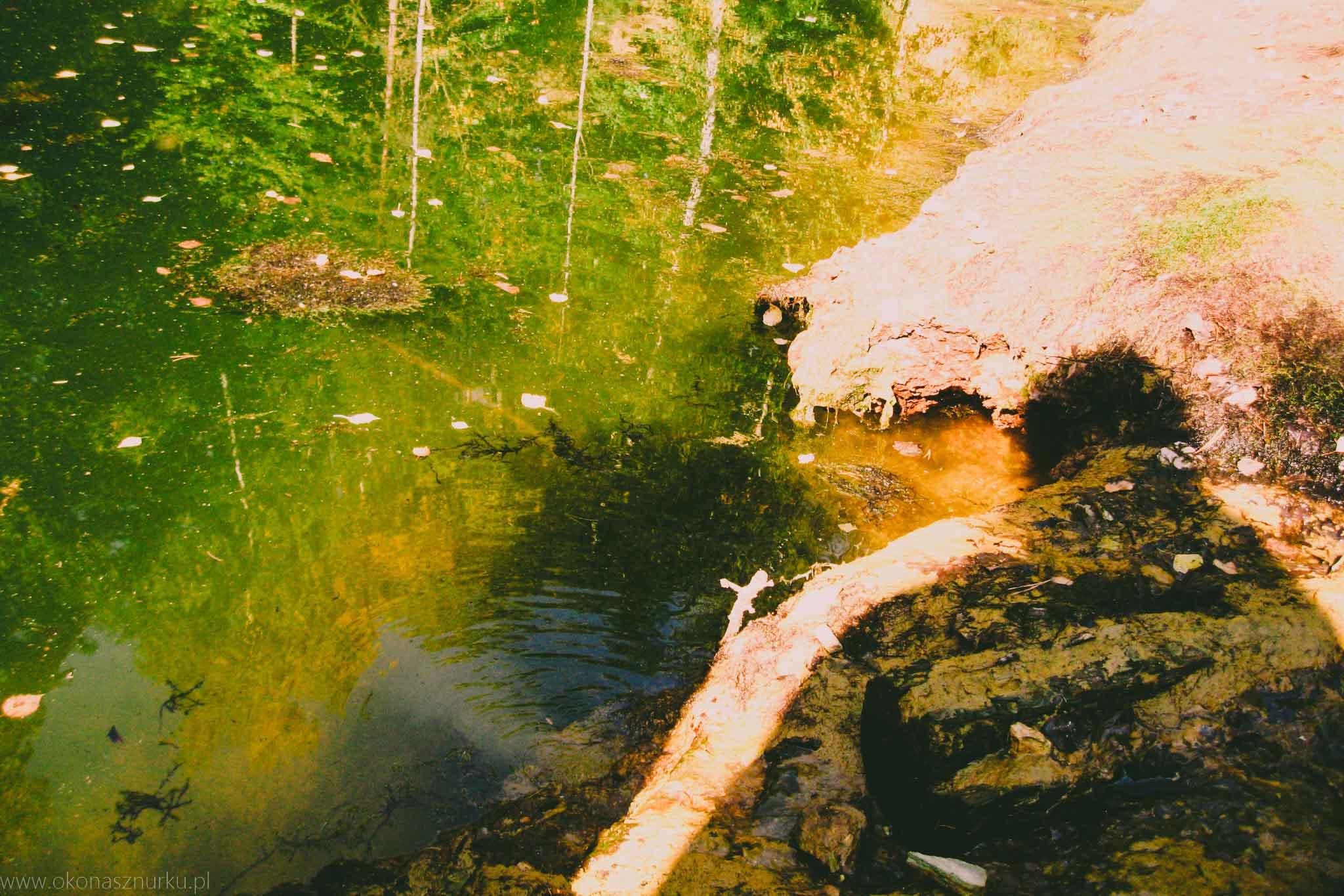 zdjecia-kolorowe-jeziorka-rudawy-janowickie-fotografia (4)