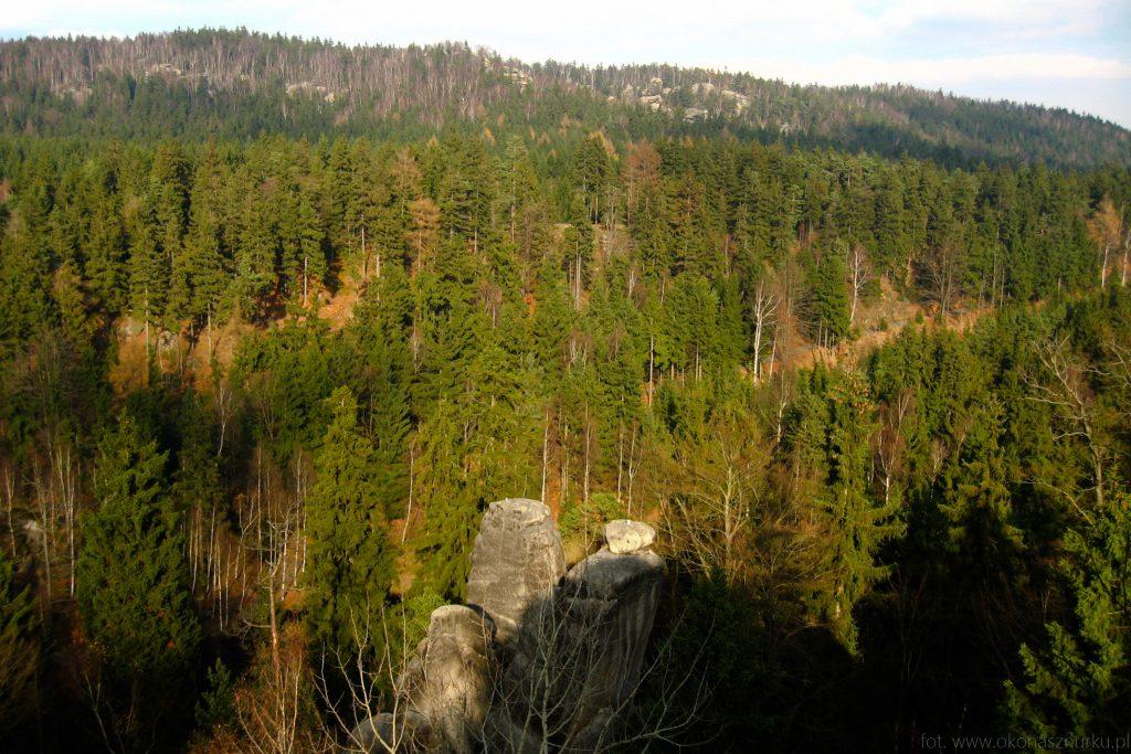 park-narodowy-gory-stolowe-zdjecia-krajobraz (11)