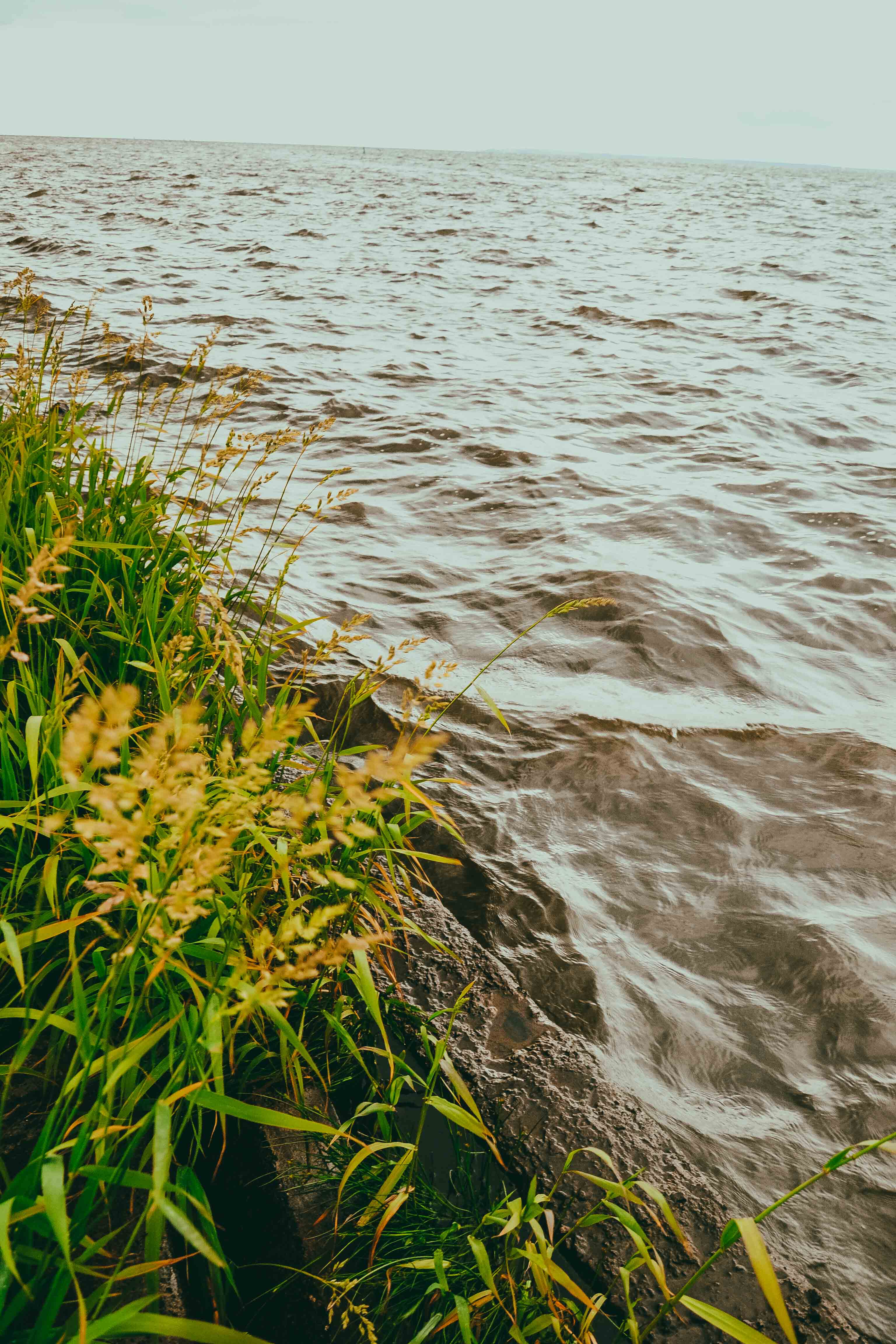 trzebież-port-marina-okonasznurku-fotografia (25)