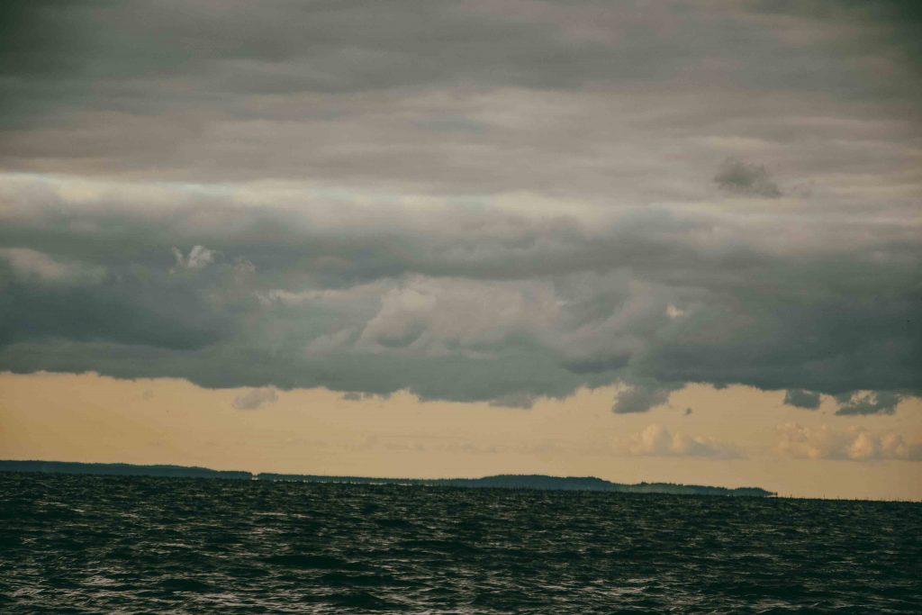 trzebież-port-marina-okonasznurku-fotografia (28)