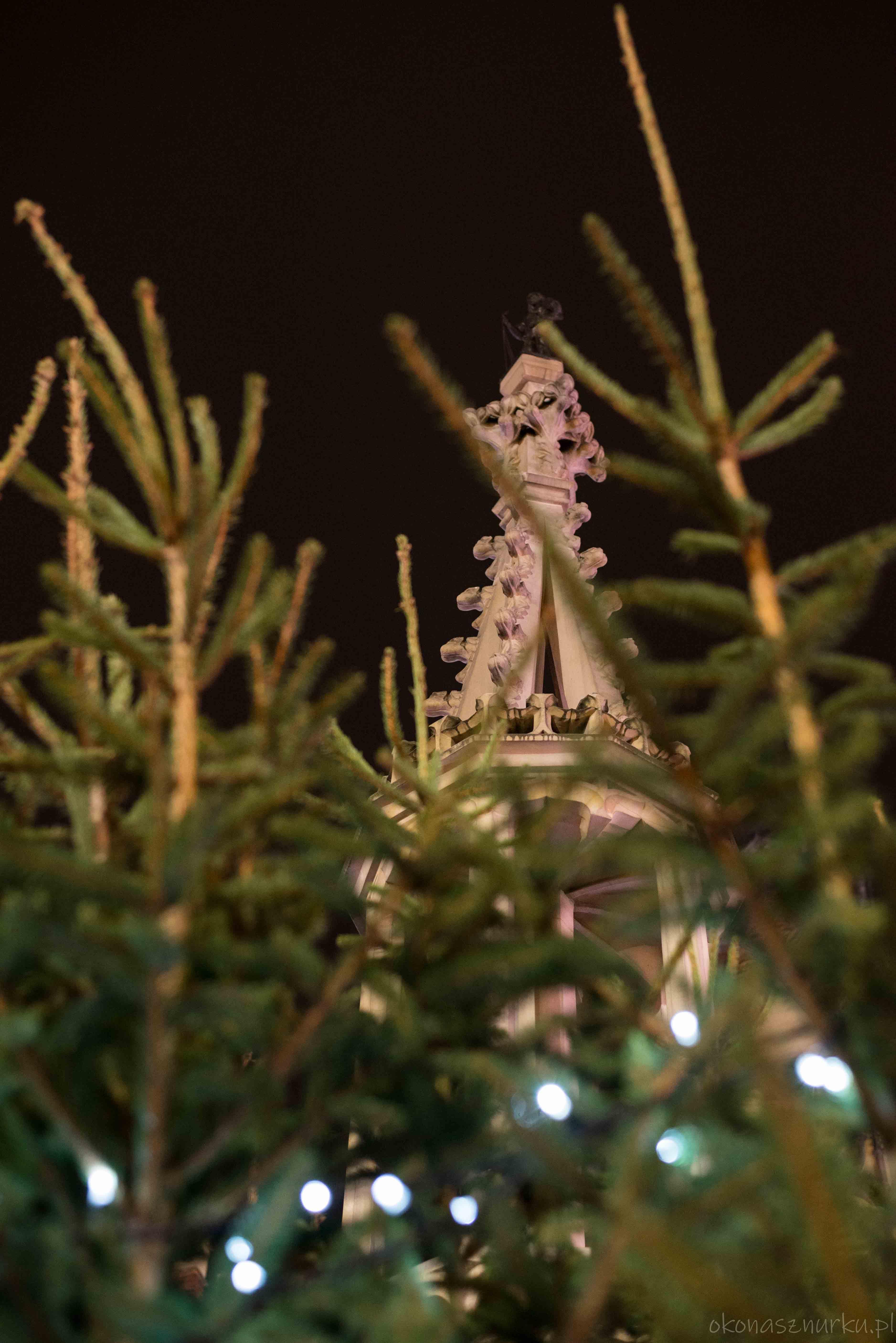 jarmark-bozonarodzeniowy-wroclaw-christmas-market-poland (110)